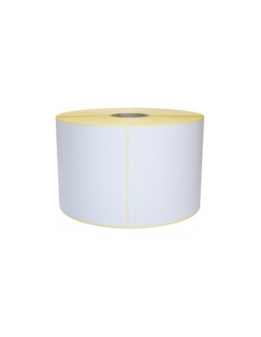 1 215 Étiquettes 102 x 152 mm pour Epson® C3500 ? Polypro Blanc